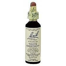 White Chestnut Bach Flower Essences 20 Ml Liquid 741273207511 Ebay