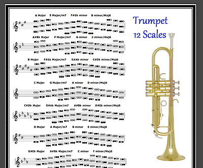 LEAD TRUMPET POSTER 12 SCALES IN A TUBE EBay
