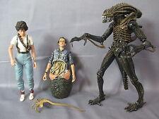 """Neca Alien """"XENOMORPH WARRIOR RIPLEY BISHOP QUEEN ATTACK"""" Lot Action Figure"""