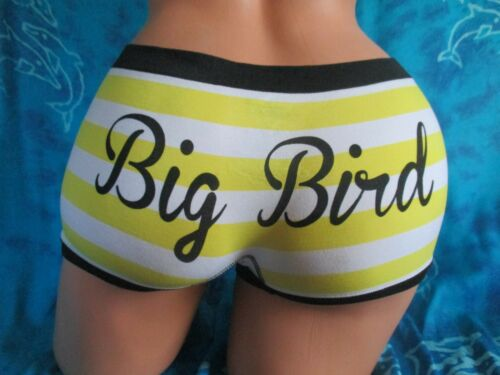 nwt Sesame Street Big Bird Yellow Soft /& Stretchy Striped Boyshorts Panties L