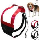 Breathable Anti-Pull Mesh Pet Dog Harness Safety No Choke Dog Strap Belt S M L