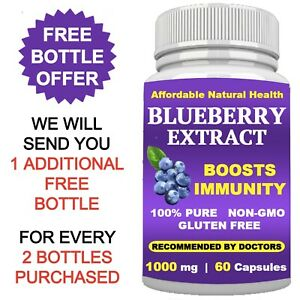 WILD BLUEBERRY SUPPLEMENT EXTRACT - 1000 mg CAPSULES - BOOSTS IMMUNE SYSTEM