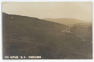RPPC-Vineyards-Winery-NAPLES-NY-Finger-Lakes-Ontario-County-Real-Photo-Postcard
