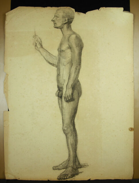 Large Drawing Original Charcoal Xixth Man Naked ; Nude Draw 63cm