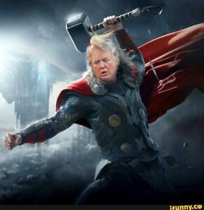 Donald-Trump-as-Thor-With-Hammer-Funny-Political-Sticker-4x4-inches-TRUMP-2020