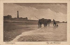 1920-VINTAGE-SCHEVENINGEN-HORSE-POSTCARD-USED-1-1-2c-Blue-Netherlands-Stamp