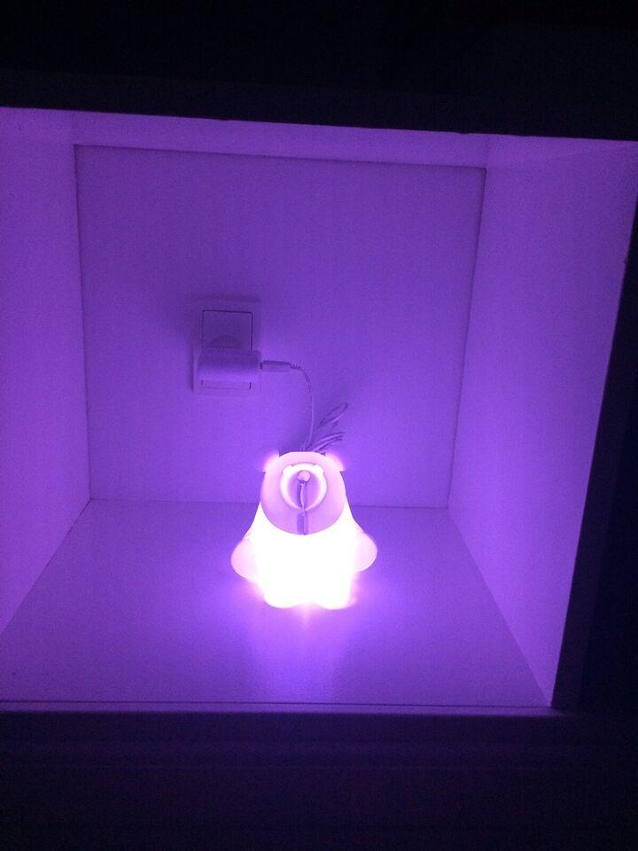 Lampe, Zoolight