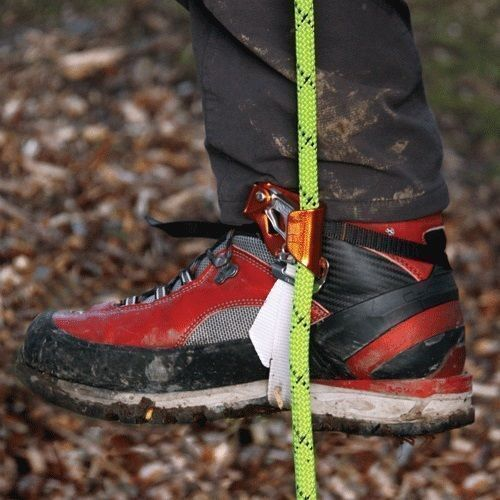 Arborist Foot Ascenders, Pantin Foot Ascender, Light & Compact, (Left) Foot
