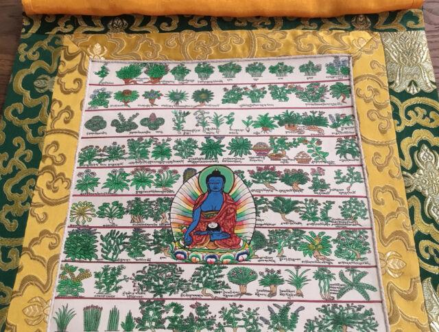 Toller MEDIZIN THANGKA mit tibet. Heilpfanzen in Brokat 56x39 cm