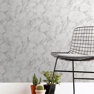 Marblesque-Marbre-Papier-Peint-Blanc-Gris-fine-decor-FD42274-Neuf