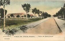 Texas, TX, Dallas, View in Fair Park Early Albertype Co Postcard