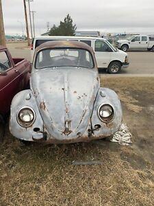 1958 Volkswagen Beetle canadian standard