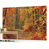 Forest Wood Landscape Trees Photo Wallpaper Wall Mural Room - 4-002pp