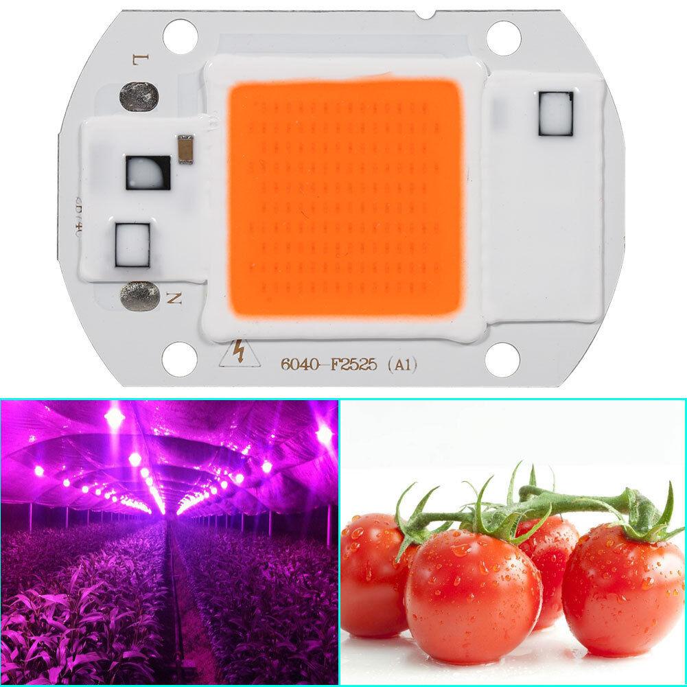 20 30 50w Full Spectrum Led Cob Chip Grow Light Plant