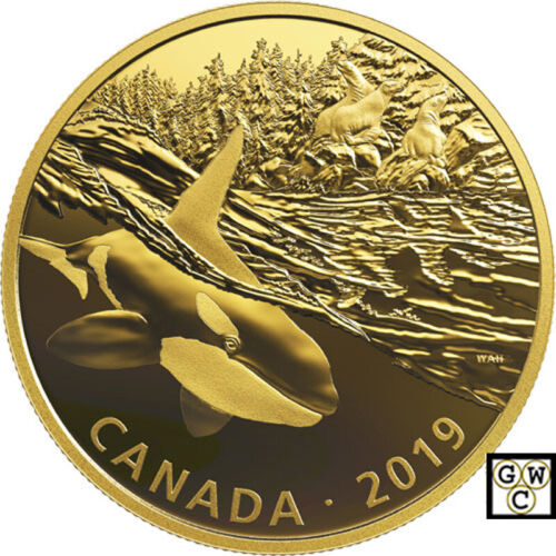 18801 2019Orca and Sea Lions-Predator and Prey Golden Reflections/'$30Fine Silver