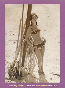 PHOTO-PRESSE-1960-CELEBRITE-MANNEQUIN-NOMMEE-JEANNE-RAINIA-OU-RAINICE-S258