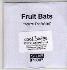 (CS681) Fruit Bats, You're Too Weird - 2011 DJ CD
