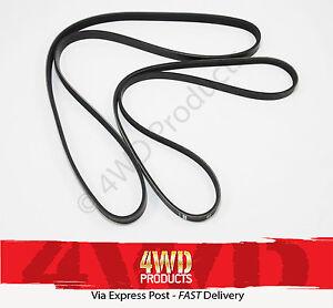 Fan-Drive-Belt-SET-Navara-D40-2-5TDi-YD25-05-5-10-Pathfinder-R51-05-10
