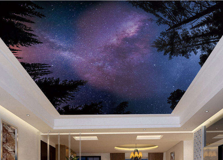 Dreamt Starry Sky Full Wall Mural Photo Wallpaper Print 3D Ceiling Decor Home