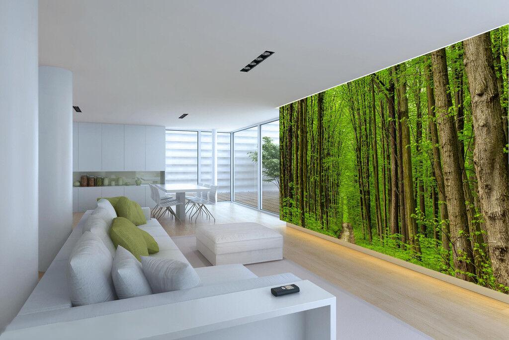 3D forest Big Big Big tree Grüning Wall Paper Print Decal Wall Deco Indoor wall Mural 4d9831