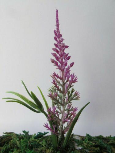 1 miniature Rosa Viola Spike Fiore Pianta Arbusto in polvere Foglie Casa delle Bambole F64