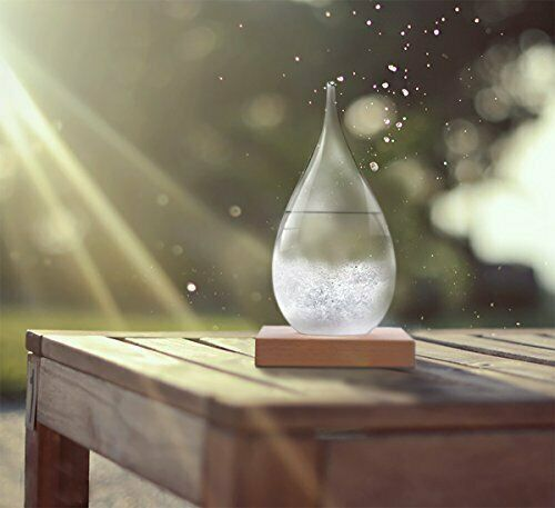 Large Storm Glass Weather Station Barometer with Wooden Base Home Decor