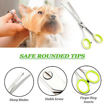 Terrific Pet Nose Safety Dog Grooming Scissors Ears Eyes Paws New Uk Download Free Architecture Designs Scobabritishbridgeorg