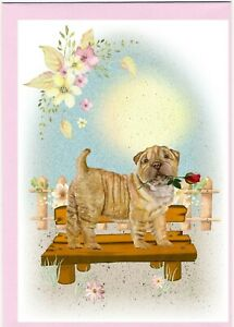 Shar-Pei-Dog-4-034-x-6-034-Blank-Card-ideal-Mothers-Day-Valentines-etc-by-Starprint