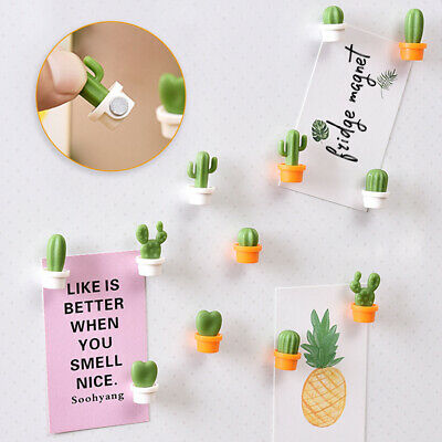 Set Fridge Magnets Succulent Cactus Plant Magnet Button Sticker Decor
