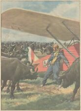 K0069 Monti Sessa Auranca - Aviatrice - Mandria Bufali - Stampa - 1930 Old print