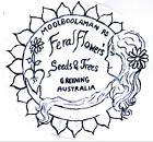 feralflowersseedsandtrees