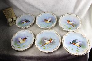 Set-12-French-limoges-marked-porcelain-bird-pheasant-dinner-plate-signed