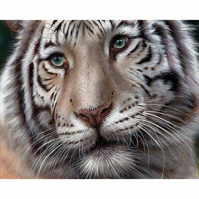 Taladro Completo Kit De Pintura De Diamante como Cross Stitch Tigre Rey animal Hágalo usted mismo ZY176B