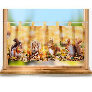 Scheibengardine Eichhörnchen 45x120 cm Bistrogardine Kurzgardine Druckmotiv