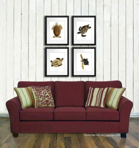 Sea Turtle Art Decor Prints set of 4 Sea Animals Wall Art Decor Wall Hanging