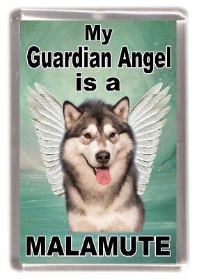 "Alaskan Malamute Dog Fridge Magnet /""THE MORE I LOVE MY DOG/"" Design by Starprint"