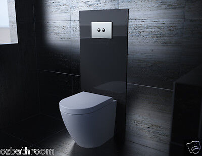concealed cistern recessed in wall WELS Toilet Toughened Glass Back Panel ONLY!!