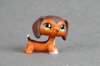 LPS Littlest Pet Shop #675 Savannah Savvy Dachshund Dog AUTHENTIC RARE