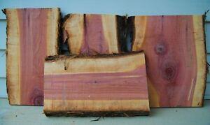 Three Live Edge Red Cedar Craft Wood Slab Cutting Board Blank Air Dried Lumber Ebay