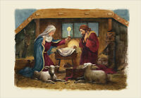 The Nativity Box Of 18 Religious Christmas Cards By Designer Greetings