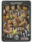 2014 TEAMCOACH SILVER CHECKLIST 04 COLLINGWOOD MAGPIES CARD