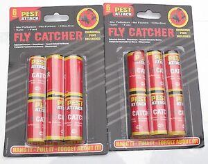 12 Fly Insectes Insectes Insectes Guêpe Poison Gratuit Collant Papiers Pièges Catchers-afficher Le Titre D'origine