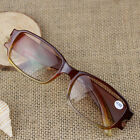 Lesebrille Sonnenbrille Bifokal SN-BI Zweistärkenbrille 1,0 1,5 2,0 2,5 Pop Gift