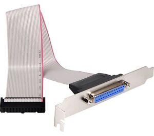 Slotblech-Parallel-Drucker-Port-25-pol-Sub-D-Buchse-LPT-Flachbandkabel-0-25m
