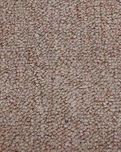 Image is loading Sagebrush-Indoor-Outdoor-Level-Loop-Area-Rug-Carpet