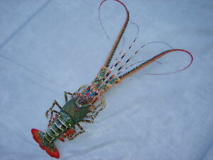 """Hand Painted 16/"""" Red Florida Lobster Wall Mount Decor Sculpture 48M-red"""