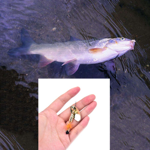Fishing Lure Spoon Bait ideal for Bass Trout Perch pike rotating Fishing /_sp