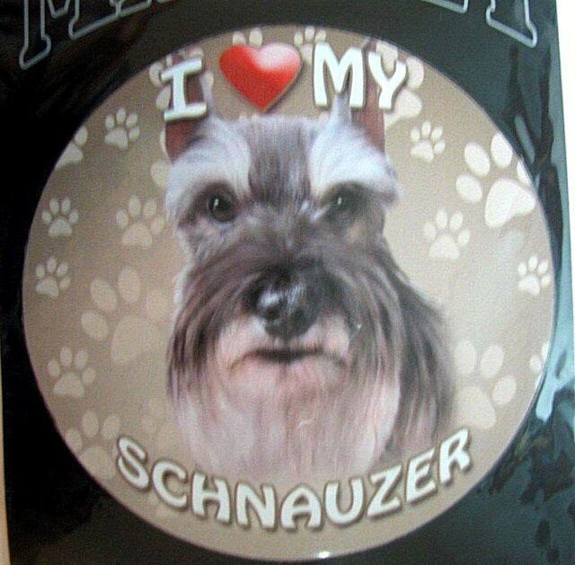 *Dog Bone Magnet* I Love My Mini Schnauzer  Car Truck Locker