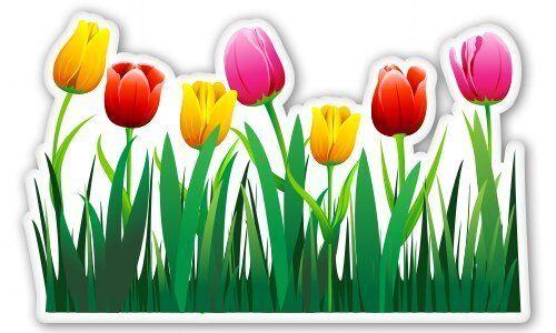 Tulips Car Vinyl Sticker SELECT SIZE