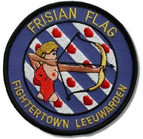 Rot Baron Kämpfer Pilot Air Force Friese Flagge Übungs Aufbügelbare 2-PATCH